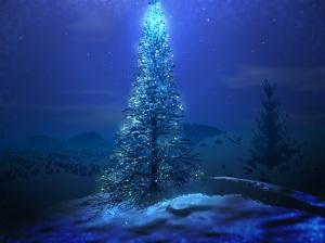 christmas-tree-magical_4043_1024x768