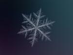 snowflake2-2
